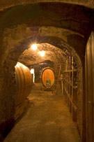 Hogl cellar